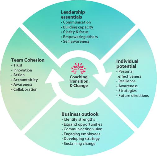 Coaching-life-cycle